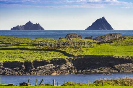 campo costa irlanda pasto municipio paisagem