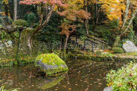 jardim japones do outono