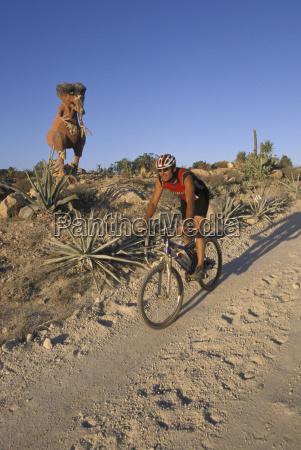 homem andando de bicicleta em estrada