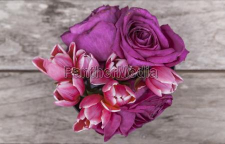tulipas, e, rosas - 21519227