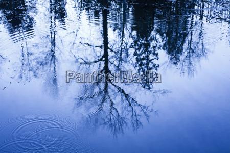 azul luz ambiente cor projeto relaxamento