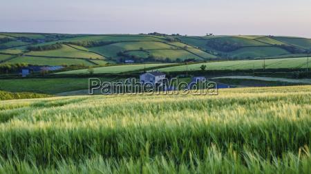agricultura campo horizontalmente al aire libre