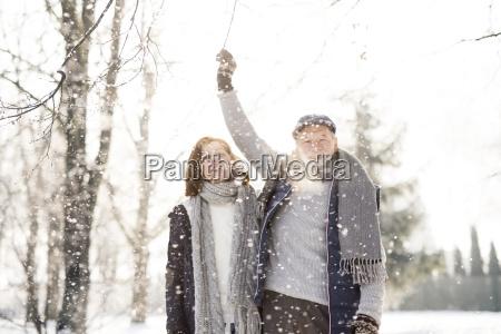 happy senior couple in winter landscape