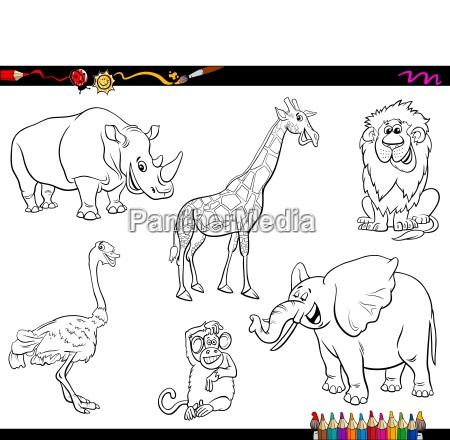 Safari Cartoon Animal Personagens Livro De Colorir Stockphoto