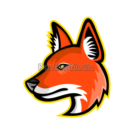 dhole or asiatic wild dog mascot