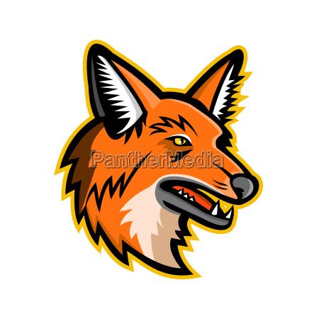 maned wolf mascot