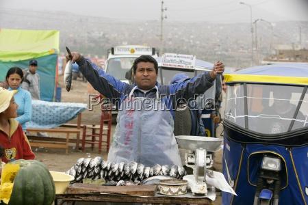 comida vender retrato pescado horizontalmente comerciante