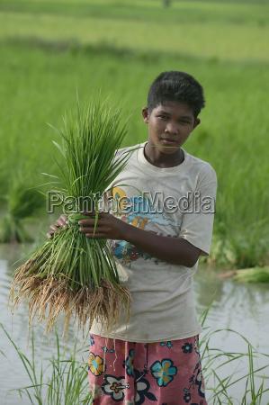 pessoas povo homem agricola adolescente aguas