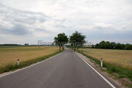 trafego trafego rodoviario milharal avenida caminho
