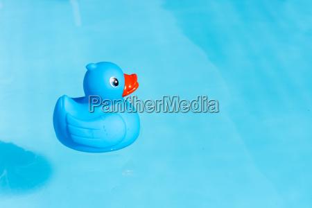 azul objeto solitario lazer cor closeup