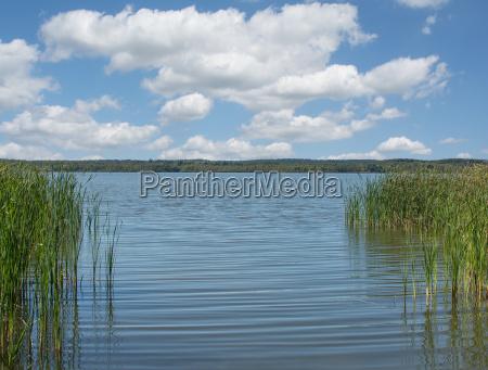 lago zierker veja em neustrelitz distrito