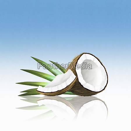 pedacos de coco
