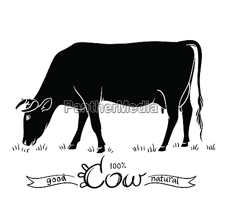 cow isolated black and white silhouettes