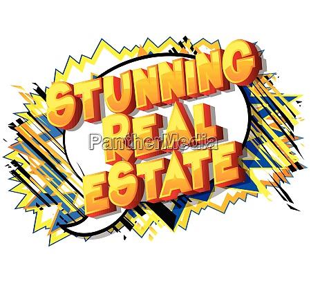 stunning real estate comic book