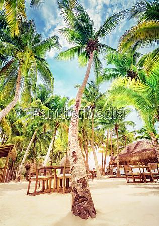 estancia de praia tropical