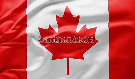 agitando bandeira nacional do canada