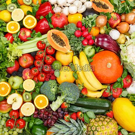 frutas e legumes coletam alimentos de
