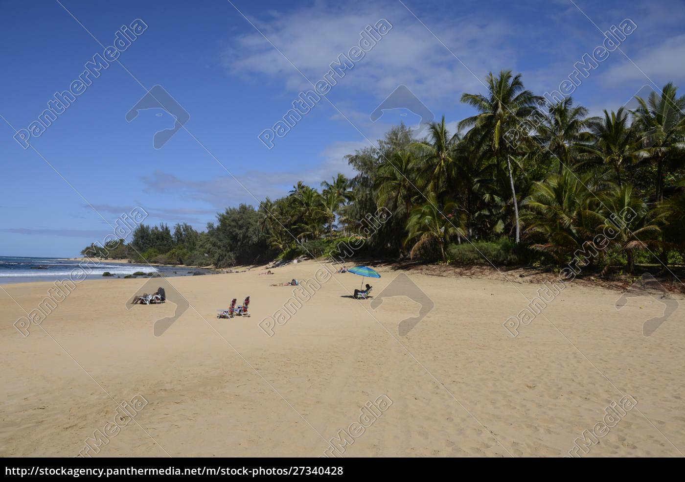 sunbathers, no, parque, de, estado, de - 27340428