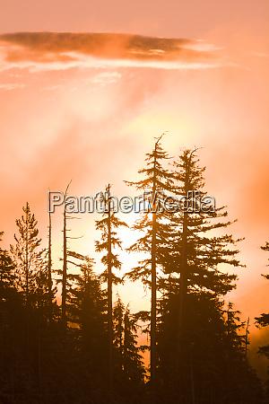 vistas panoramicas do nascer do sol
