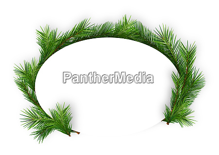 christmas oval frame with coniferous twigs