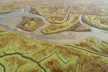 vista aerea do amplo ecossistema pantanoso