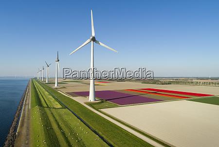 parques eolicos tanto em campoes de