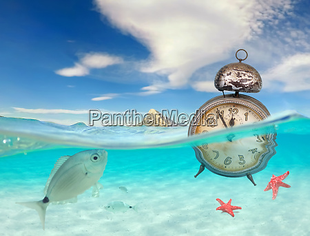 oceano turquesa com vista subaquatica e