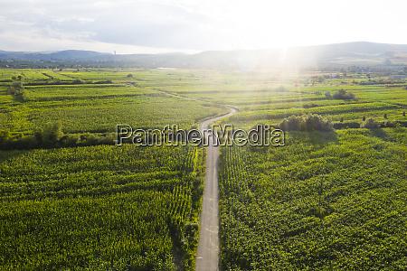 vista de drone do campo romeno