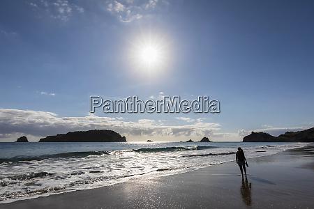 nova zelandia ilha do norte waikato