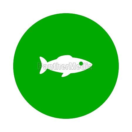 peixes e circulos