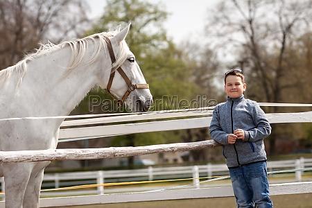cavalo branco olha para o menino