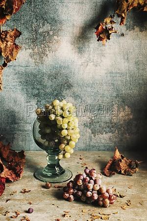 vida morta com uvas e folhas