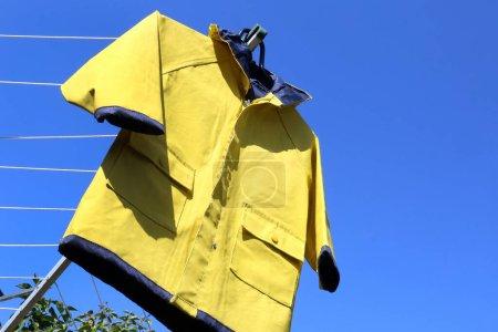 amarelo, azul, vestuário, protecção, vestido, capuz - B359063022