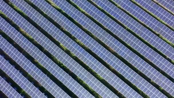 piscina verde negocios equipamentos verao sol