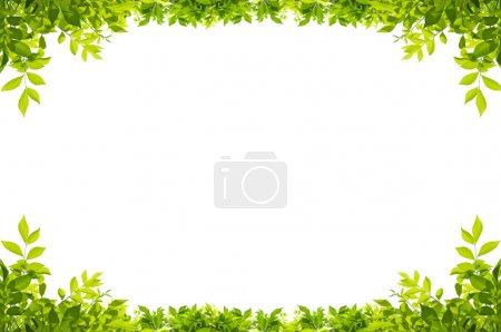 ID de imagem B20063615