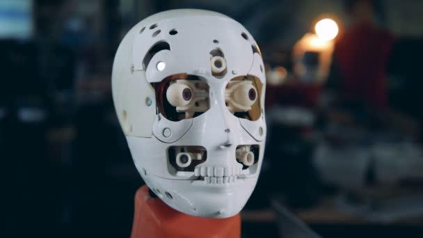 branco artificial negocios metal humana cabeca