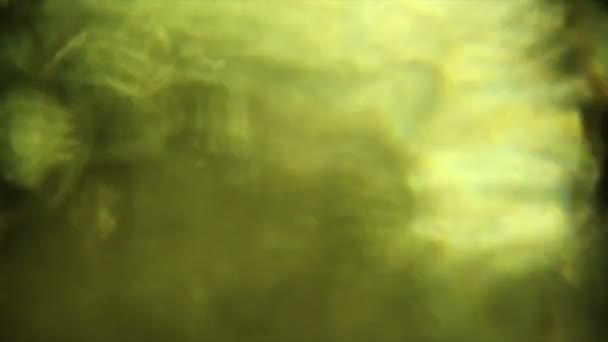 Video B99931666