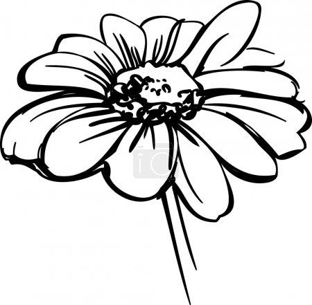 ID de imagem B7776428